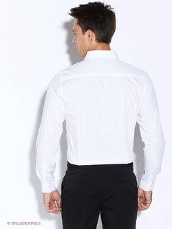 Рубашки Befree                                                                                                              белый цвет