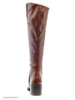 Сапоги Dino Ricci                                                                                                              коричневый цвет