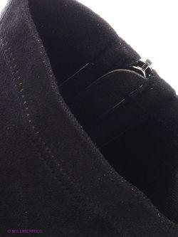 Сапоги Dino Ricci                                                                                                              черный цвет