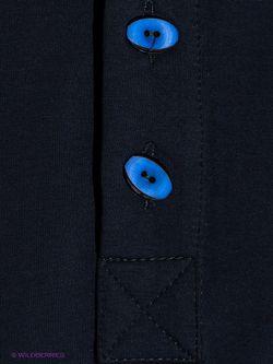 Олимпийки D.S                                                                                                              синий цвет