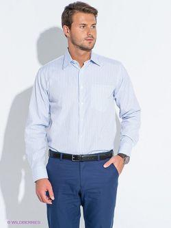 Рубашки Favourite                                                                                                              голубой цвет