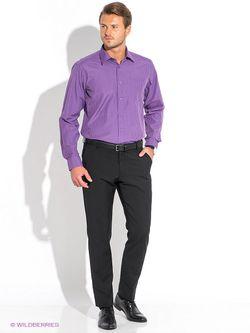 Рубашки Favourite                                                                                                              фиолетовый цвет