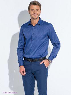 Рубашки Favourite                                                                                                              синий цвет
