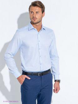 Сорочки Favourite                                                                                                              голубой цвет