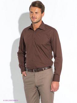 Рубашки Favourite                                                                                                              коричневый цвет