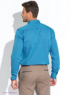Рубашки Favourite                                                                                                              Бирюзовый цвет