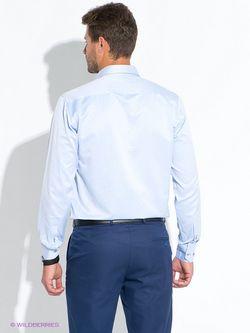 Рубашки BAWER                                                                                                              голубой цвет