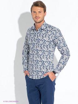 Рубашки BAWER                                                                                                              белый цвет