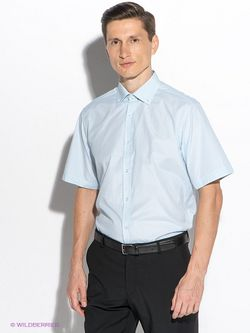 Рубашки Maestro                                                                                                              голубой цвет