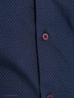 Рубашки Tom Farr                                                                                                              синий цвет