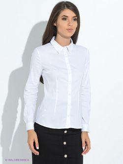 Блузки Tom Farr                                                                                                              белый цвет