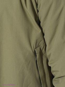 Куртки Catbalou                                                                                                              хаки цвет