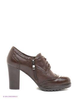 Туфли Elche                                                                                                              коричневый цвет