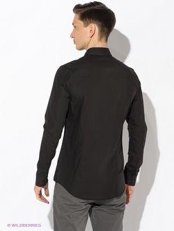Рубашки Calvin Klein                                                                                                              чёрный цвет
