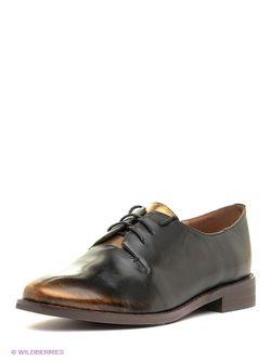 Ботинки Dino Ricci                                                                                                              чёрный цвет
