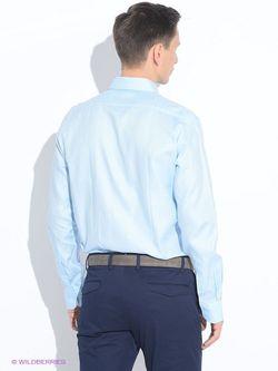 Рубашки Incity                                                                                                              голубой цвет