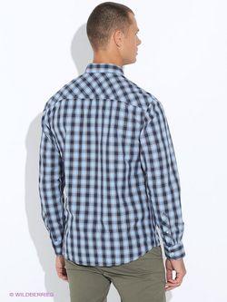 Рубашки s.Oliver                                                                                                              голубой цвет