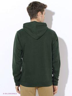 Толстовки ARBOR VITAE                                                                                                              зелёный цвет