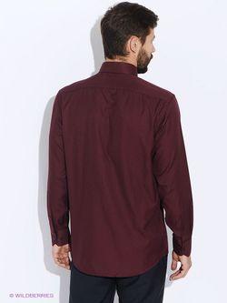 Рубашки Conti Uomo                                                                                                              красный цвет