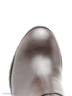 Сапоги Francesco Donni                                                                                                              коричневый цвет