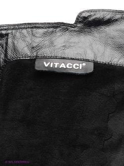 Ботфорты Vitacci                                                                                                              черный цвет