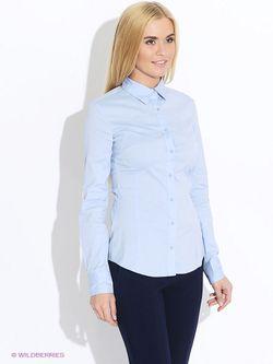 Блузки MOTIVI                                                                                                              голубой цвет