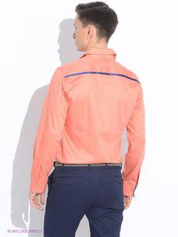 Рубашки Мы команда                                                                                                              оранжевый цвет
