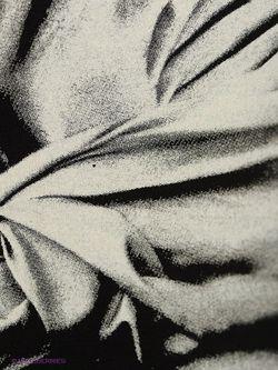 Лонгслив Isabel De Pedro                                                                                                              чёрный цвет