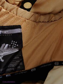 Куртки Stayer                                                                                                              чёрный цвет