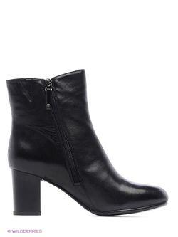 Ботинки Calipso                                                                                                              черный цвет