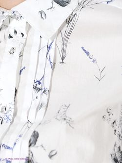 Блузки Stilla                                                                                                              белый цвет