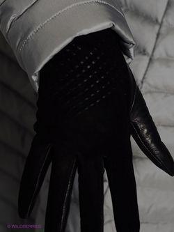 Перчатки Eleganzza                                                                                                              чёрный цвет