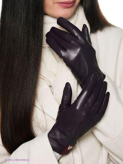 Перчатки Labbra                                                                                                              фиолетовый цвет