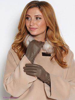 Перчатки Labbra                                                                                                              коричневый цвет