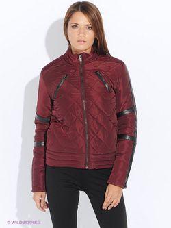 Куртки Camelot                                                                                                              красный цвет