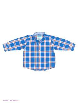 Рубашки ТВОЕ                                                                                                              синий цвет