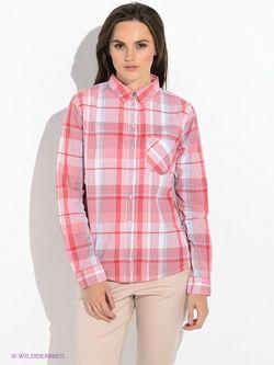 Рубашки TOM TAILOR                                                                                                              красный цвет