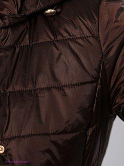 Куртки Conver                                                                                                              коричневый цвет
