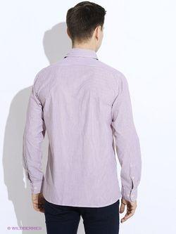 Рубашки Westrenger                                                                                                              красный цвет