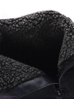 Полусапожки Ascot                                                                                                              чёрный цвет