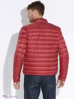 Куртки Eden Park                                                                                                              Малиновый цвет