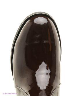 Сапоги Daze                                                                                                              коричневый цвет