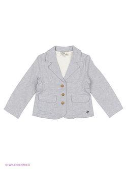 Пиджаки MANAI                                                                                                              серый цвет