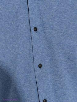 Рубашки MAURIZIO BALDASSARI                                                                                                              голубой цвет