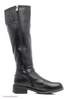 Ботфорты Covani                                                                                                              черный цвет