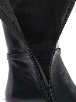 Сапоги Covani                                                                                                              черный цвет