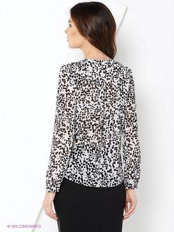 Блузки Stilla                                                                                                              чёрный цвет