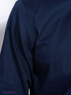 Рубашки Conti Uomo                                                                                                              синий цвет