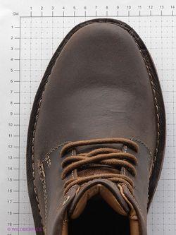 Ботинки Clarks                                                                                                              коричневый цвет
