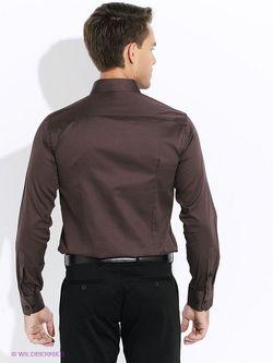 Рубашки Club21                                                                                                              коричневый цвет